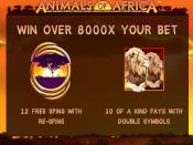 Animals of Africa Screenshot 1