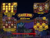 Cash Pig Screenshot 1