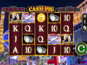Cash Pig Screenshot 2