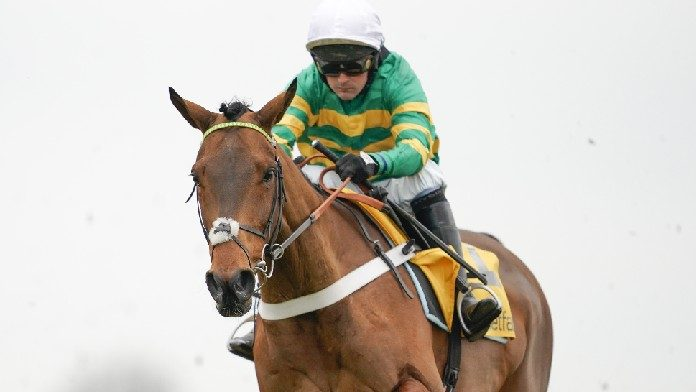 Champ Could Prove Appropriately-Named in The Gold Cup
