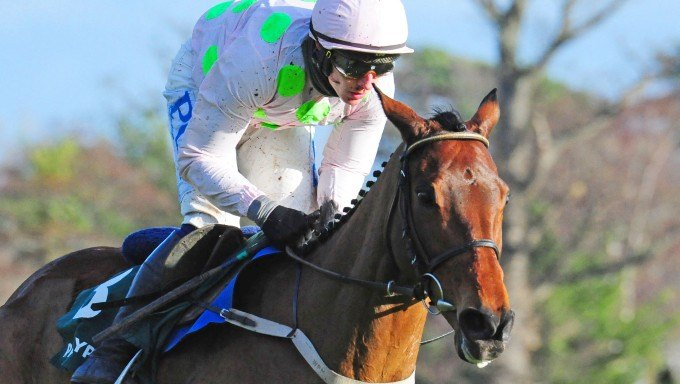 David Mullins: Why Chacun Pour Soi is Made for Cheltenham