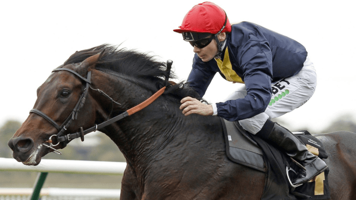 Lincoln Handicap Trends, Tips & Betting Analysis