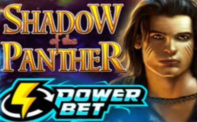 Shadow of the Panther Power Bet Online Slot
