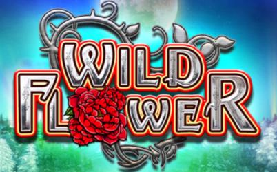 Wild Flower Online Pokie