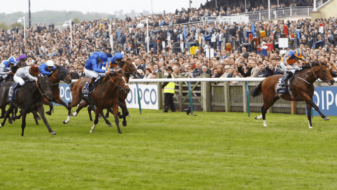 Finding Value in The 2000 Guineas & 1000 Guineas at Newmarket