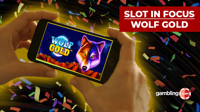 Online Slot In Focus: Wolf Gold by Pragmatic Play