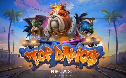 Relax With The Great Casini Slots With No Download