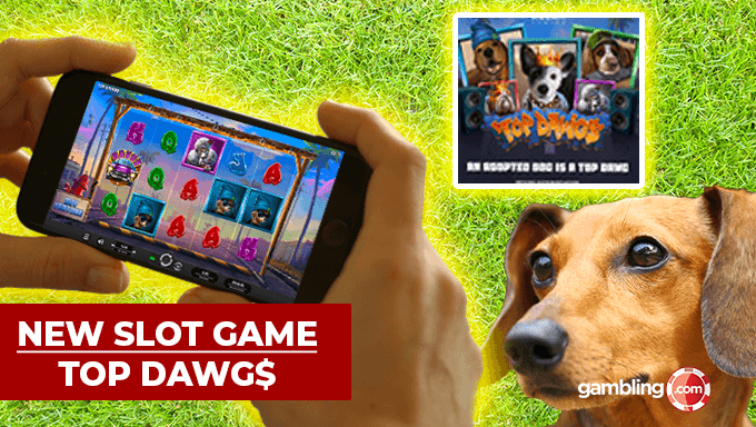 Relax With The No Download Magilicious Slots Here