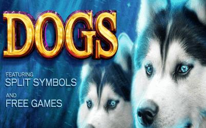 Dogs Online Slot