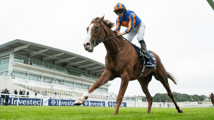 Ultimate Guide To The 2021 King George VI and Queen Elizabeth Qipco Stakes