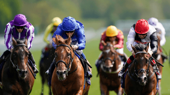 Runner-by-Runner Guide to The Cazoo St Leger