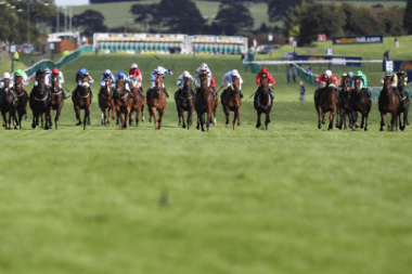 2021 Ayr Gold Cup Trends