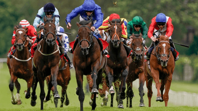 Native Trail Set to Sprinkle Some Stardust on Dewhurst Stakes