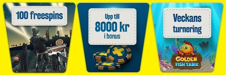 Vada ut bland vinsterna i det svenska nätcasinot!