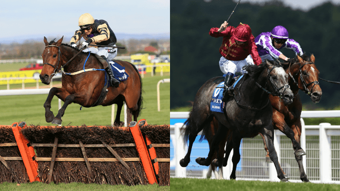 Horse Racing Betting Strategy: Jump vs Flat Racing