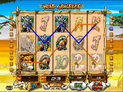 Wild Gambler Screenshot 3