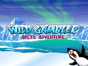 Wild Gambler Arctic Adventure Screenshot 1