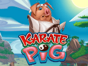 Karate Pig Screenshot 1
