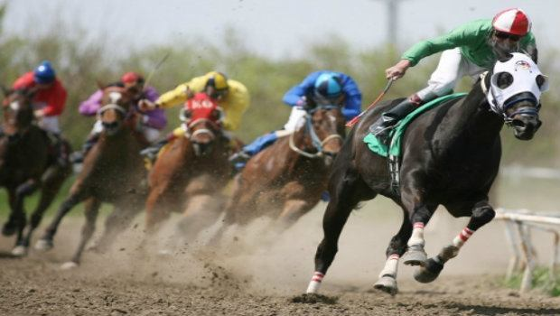 fantasy cup auto racing horse racing betting games
