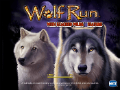 Wolf Run Screenshot 1