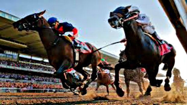 Horse Racing Betting Strategy: Choosing and Using a Strategy