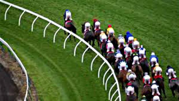 Sports Betting Strategy: Horse Racing