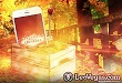 Höstens miljonkampanj rullar vidare i Leos casino-app