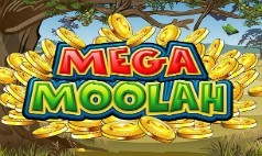 Mega Moolah Slot Sites