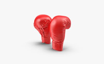 Boxning vadslagning