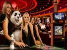 Royal Panda Live Casino Screenshot