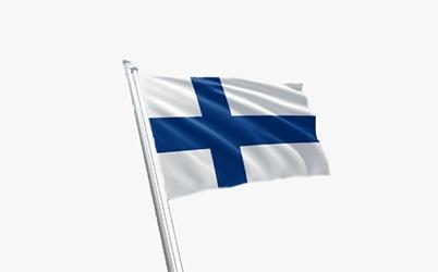 Nettipelaaminen Suomessa