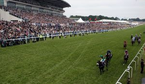 2016 Epsom Derby Preview - We bring you all the runners and riders ahead of the big day