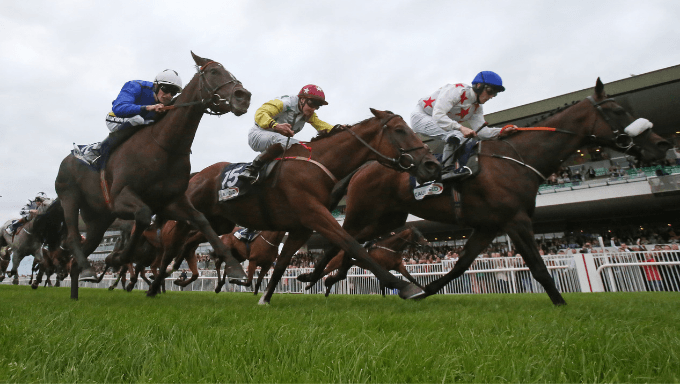 Galway Races 2020 Tips, Odds and Analysis