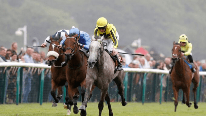 Nunthorpe Stakes 2019 Betting Preview, Odds and Tips