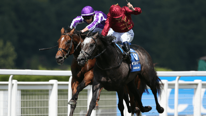 Irish Champion Stakes Betting Tips: Take This 8/1 Each-Way