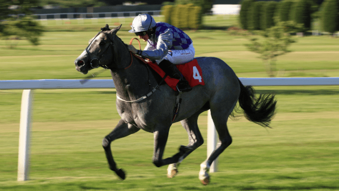Flying Five Stakes Betting Tips: 6/1 Hit Bids To Beat Grey