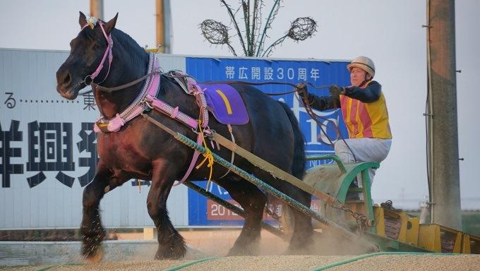 Banei Keida horse racing Japan