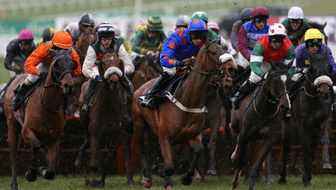 Sodexo Gold Cup Betting Tips: Steer Clear Of Favourites