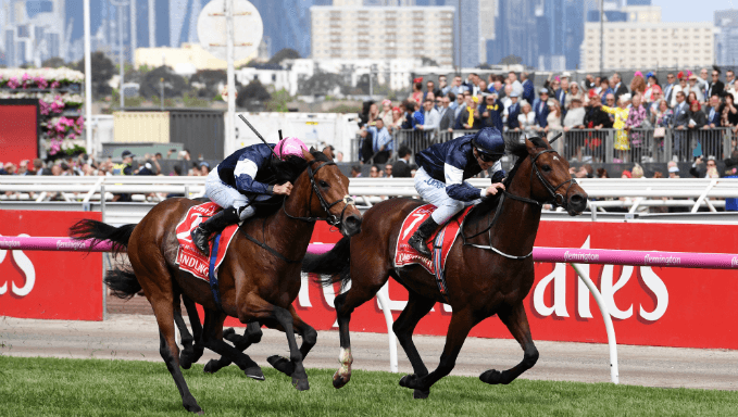 Melbourne Cup Betting Tips: Follow Stamina For Cup Success