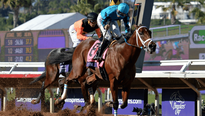 Breeders' Cup Sprint Betting Odds, Tips & Best Bets 2018