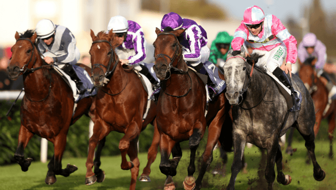 2,000 Guineas 2019 Betting Tips, Odds & Analysis