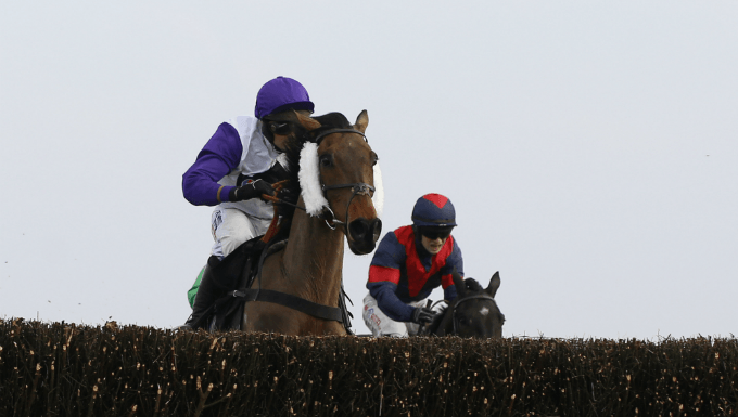 Badger Ales Chase Betting Tips: Take Nicholls On With John