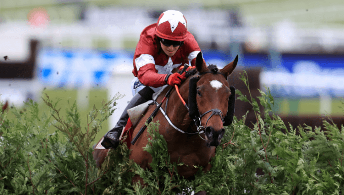 Cheltenham Cross Country Betting Tips: Comedy On A Roll At 8/1