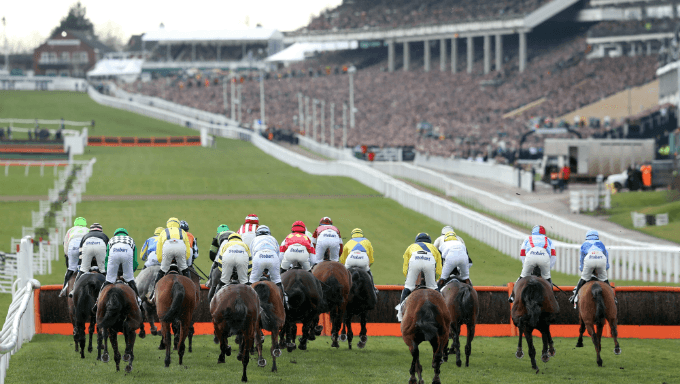 Supreme Novices' Hurdle Trends - Cheltenham Festival Betting