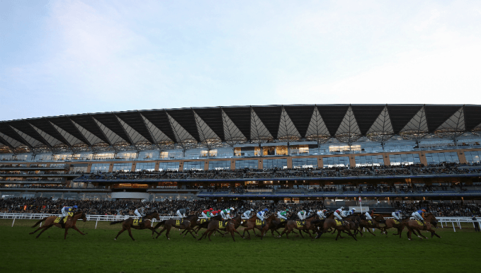 Ascot Betting Tips: If You Say Run Primed For Mares' Hurdle