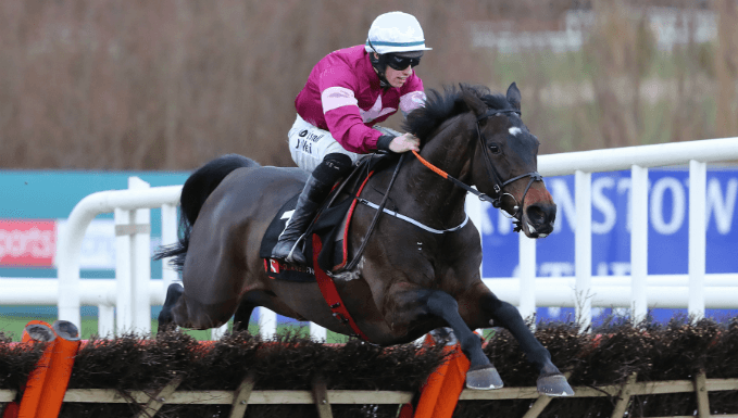 Apple's Jade is the best Champion Hurdle bet at 9/1
