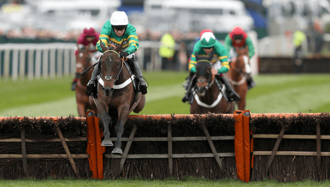 Buveur D'Air is bidding for a third Champion Hurdle win