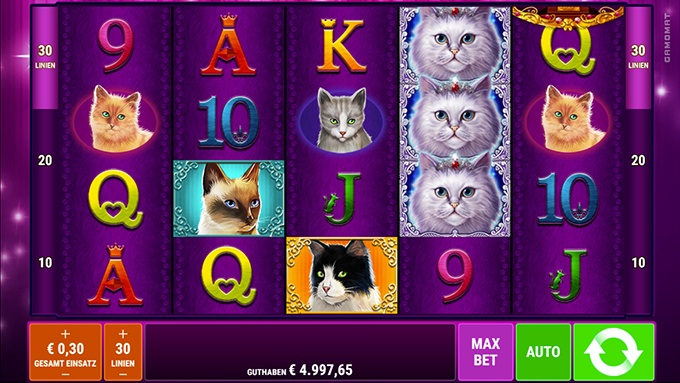 Spielautomat Cutie Cat