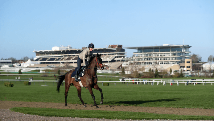 Cheltenham Betting Tips & Predictions For Festival 2019