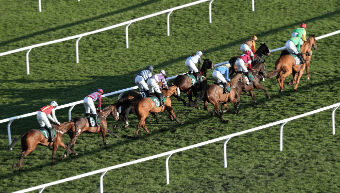 National Hunt Chase Trends - Cheltenham Festival Betting